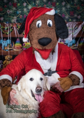 watermarked-Santa Paws-0336
