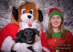 watermarked-Santa Paws Tranent-0048