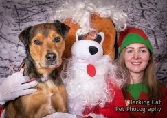 watermarked-Santa Paws Tranent-0056